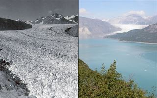 Uydu fotoğraflarıyla gezegenimizin seneler içerisindeki değişimi