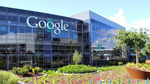 Karşınızda Google'ın yeni uygulaması Seedbank