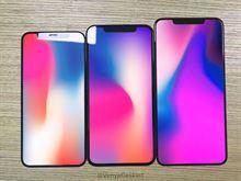 Yeni iPhone'ların sızan ekran panelleri, modellerin boyut farkını orata koyuyor