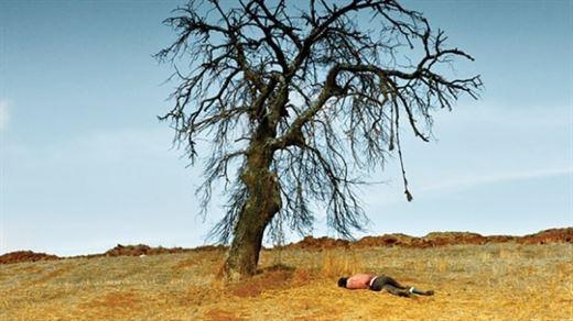 Ahlat Ağacı ülkemizin Oscar Adayı seçildi!