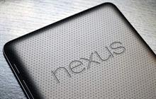 Yeni Nexus telefonu ile ilgili görseller gelmeye devam ediyor